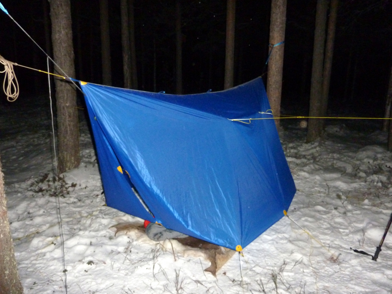 Hammocking In -11 F