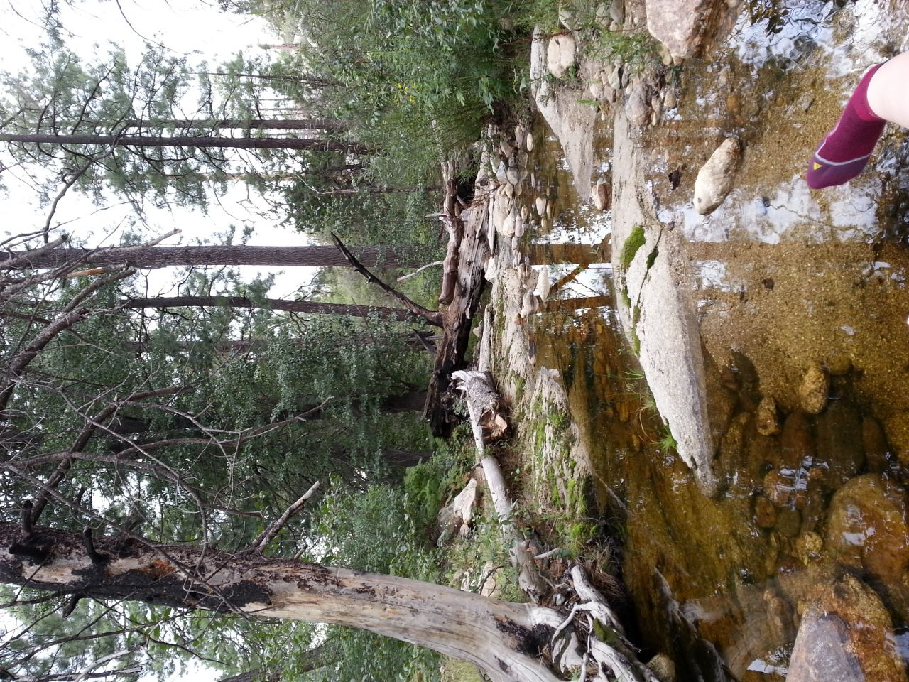 Wilderness Of Rocks, Tucson Az