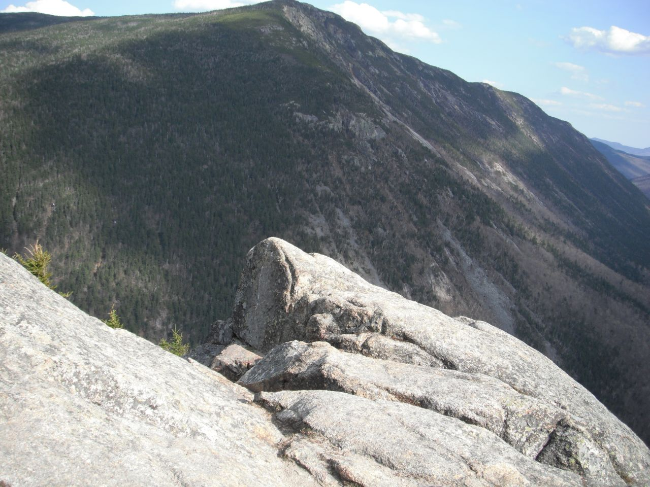 View From Mt. Willard In The White Mountains
