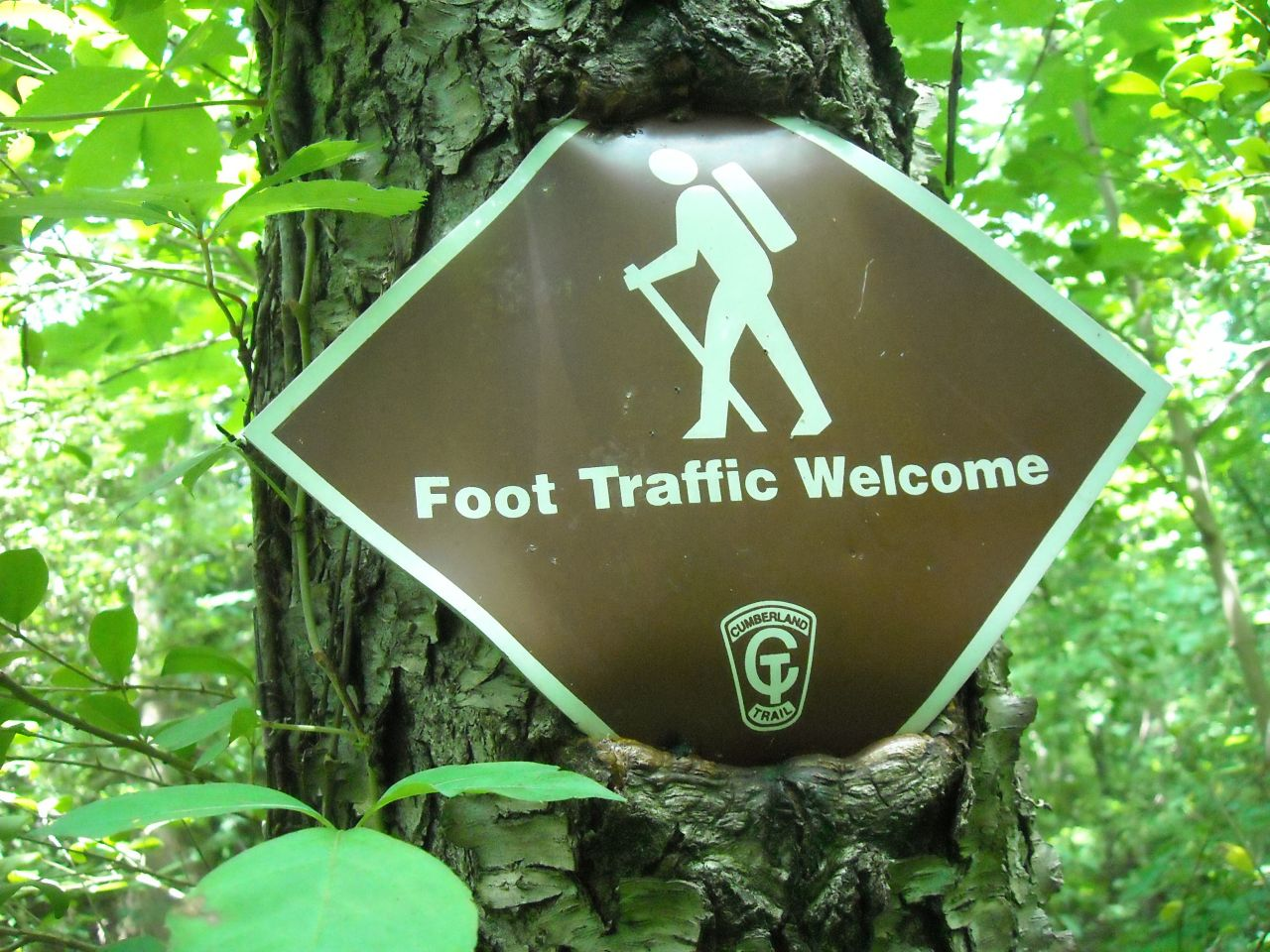 Dr Foot Traffic Sign