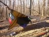 Yellow River State Forest by Hangin'Yankee in Hammock Landscapes