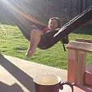 Morning Coffee Hangin' by mab0852 in Hammocks