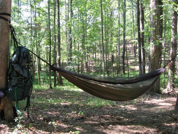 hanging with Speer webbing/cinch buckle/rope/biner