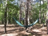 netless Safari lots of sag by BillyBob58 in Hammocks