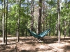 Netless Safari stealth hang in MS by BillyBob58 in Hammocks
