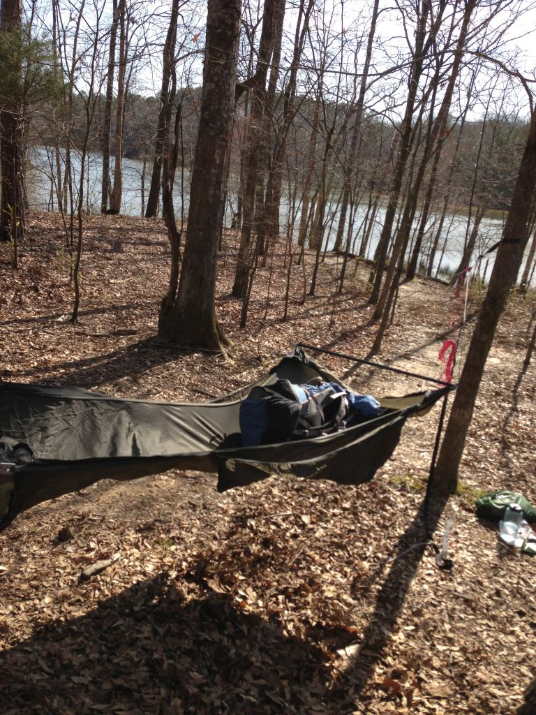 Swamp Hang