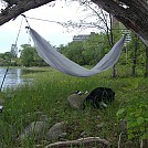 More Urban Hanging... by larrybourgeois in Hammock Landscapes