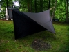 Ogee Grizz Beak 002 by Hawk-eye in Tarps