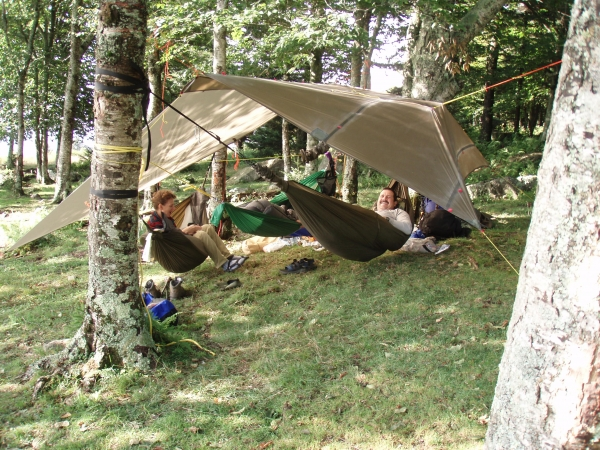 3 hammocks, one shelter