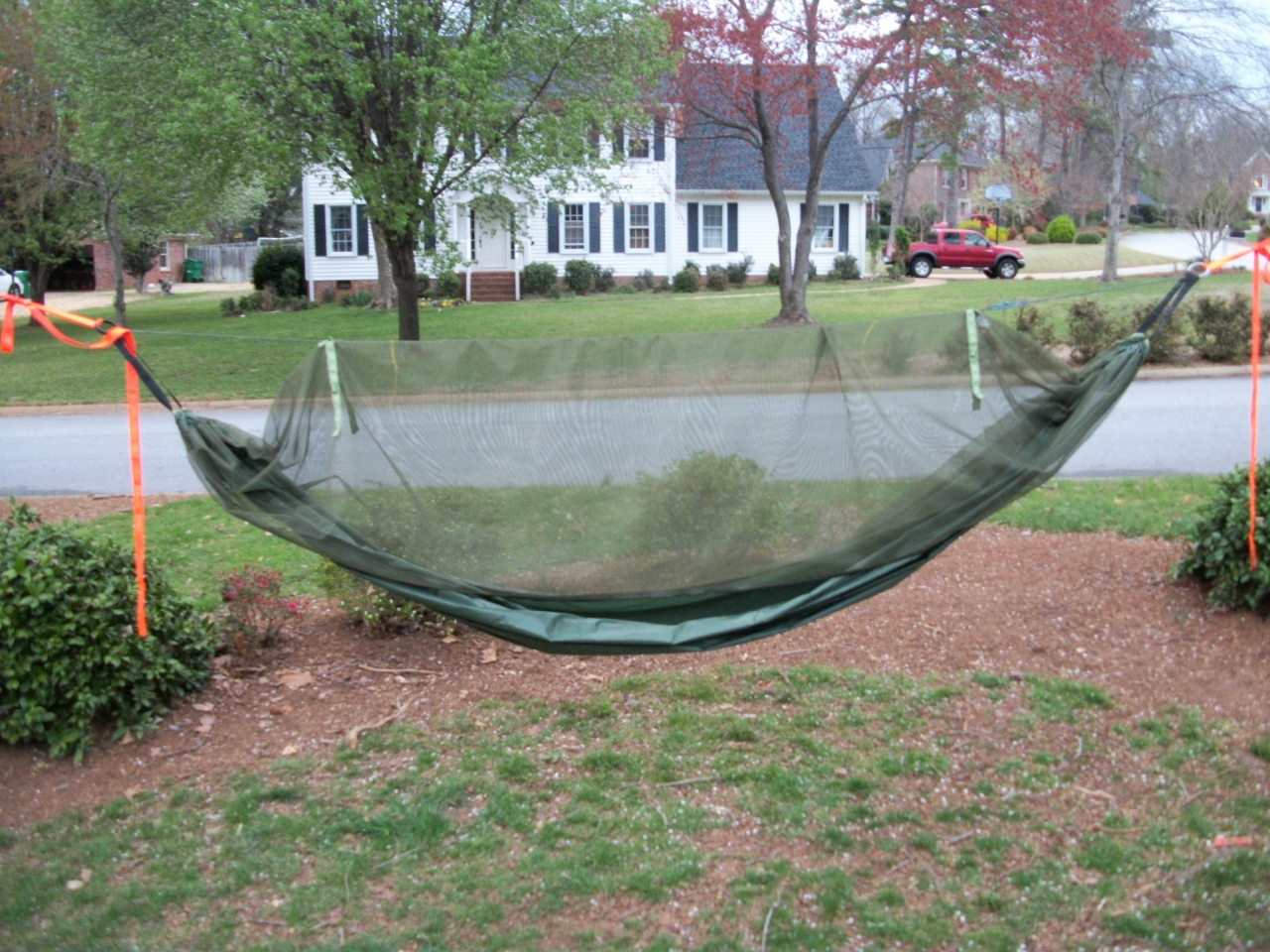 King Of The Jungle Hammock