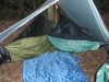 2 Hammocks, 1 Tarp by GvilleDave in Group Campouts