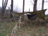 Hennessy Hammock w/ 9x9 Gear Guide tarp by headchange4u in Hammocks