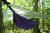 Greenbrier State Park In Md On July 4, 2010 by AndyB in Hammock Landscapes