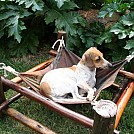 My African Hammock Chair Range by Designsmith in Hammocks
