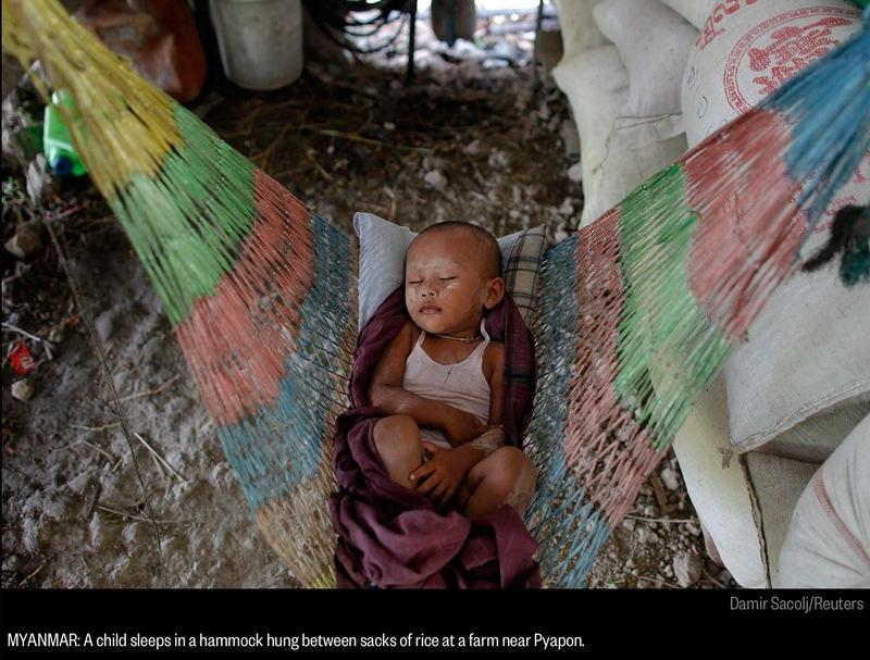 Myanmar Baby In Hammock