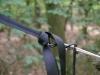 Warbonnet Blackbird