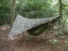 Warbonnet Blackbird by STOCKHOLM-SYNDROME in Hammocks