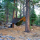 img 0181brs by Qoo in Hammock Landscapes