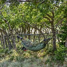 Stealth hammocking by Taozenqi in Hammock Landscapes