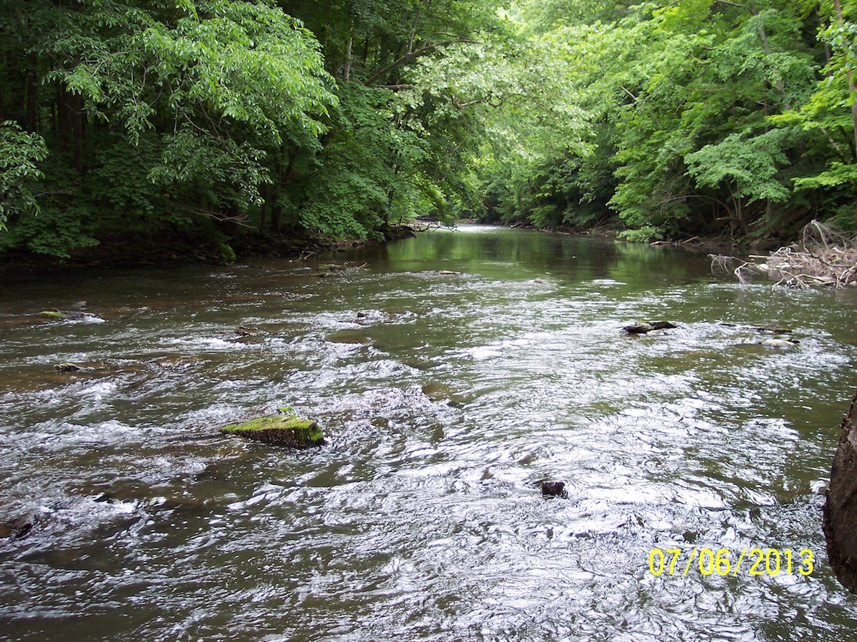 Mohican 1 - Clear Fork River