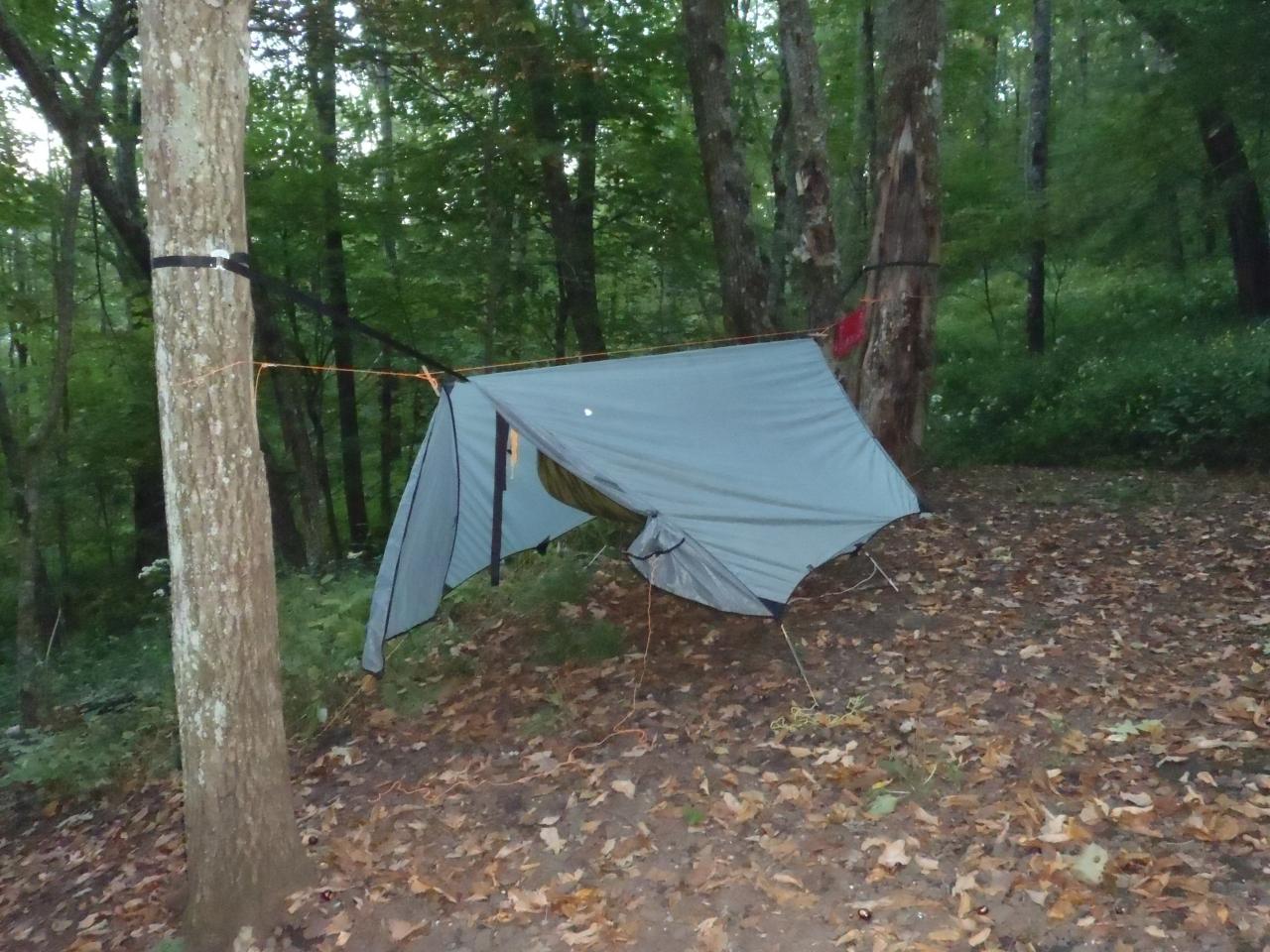 Hammocks In The Woods