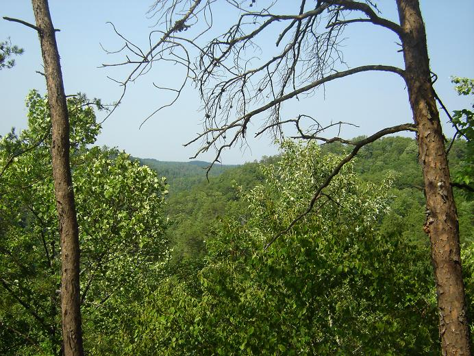View From An Overlook Near Hidden Arch, RRG
