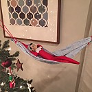 Hangin' Elf by dakotaross in Hammock Landscapes