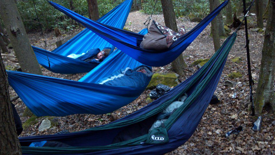 Hammock Creeper Trail