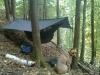 Sht Hike by DeeGore in Hammock Landscapes