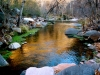 January Arizona Group Hang, Fossil Springs