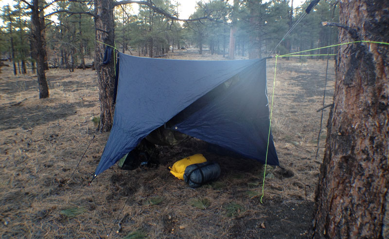 beb8147f07b grand trunk funky forest tarp.  Archive  - Hammock Forums - Hammocks and  hammock camping - Elevate Your Perspective