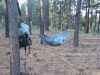 7.65 Oz (217 G) Hammock With Suspension!