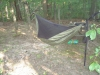 Wb Bb 1.7 Dbl by Z-Man in Hammocks