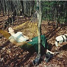 hammocking