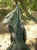 Warbonnet Blackbird Netting Tieoff by Coldspring in Hammocks