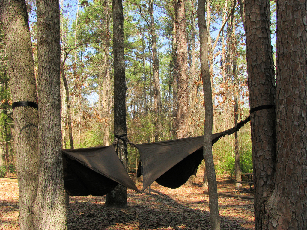 Hammocking Is....
