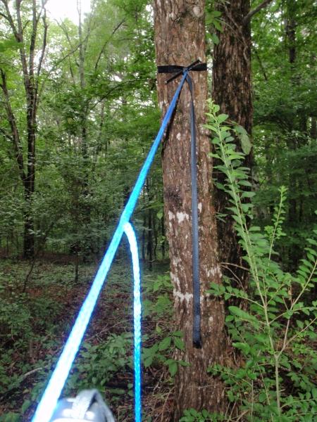 Whoopie Sling To Tree