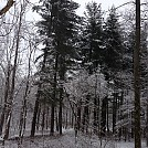 Springs Valley, Hoosier Natl Forest - Feb 2014 by indianahiker in Group Campouts