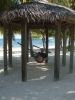 Grand Cayman Hang by Wise Old Owl in Hammock Landscapes