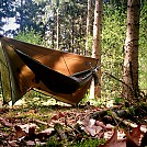 mixed forest hang by ThinBlueLine in Hammock Landscapes