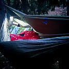 Comfy one by ThinBlueLine in Hammocks