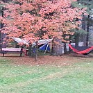 2014 Fall MAHHA by The Tree Frog in Hammock Landscapes