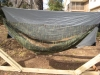bug net on hammock