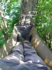 Narrow Foot Bridge by GrizzlyAdams in Homemade gear