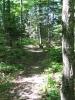 Hammock Hiking Through Prnl