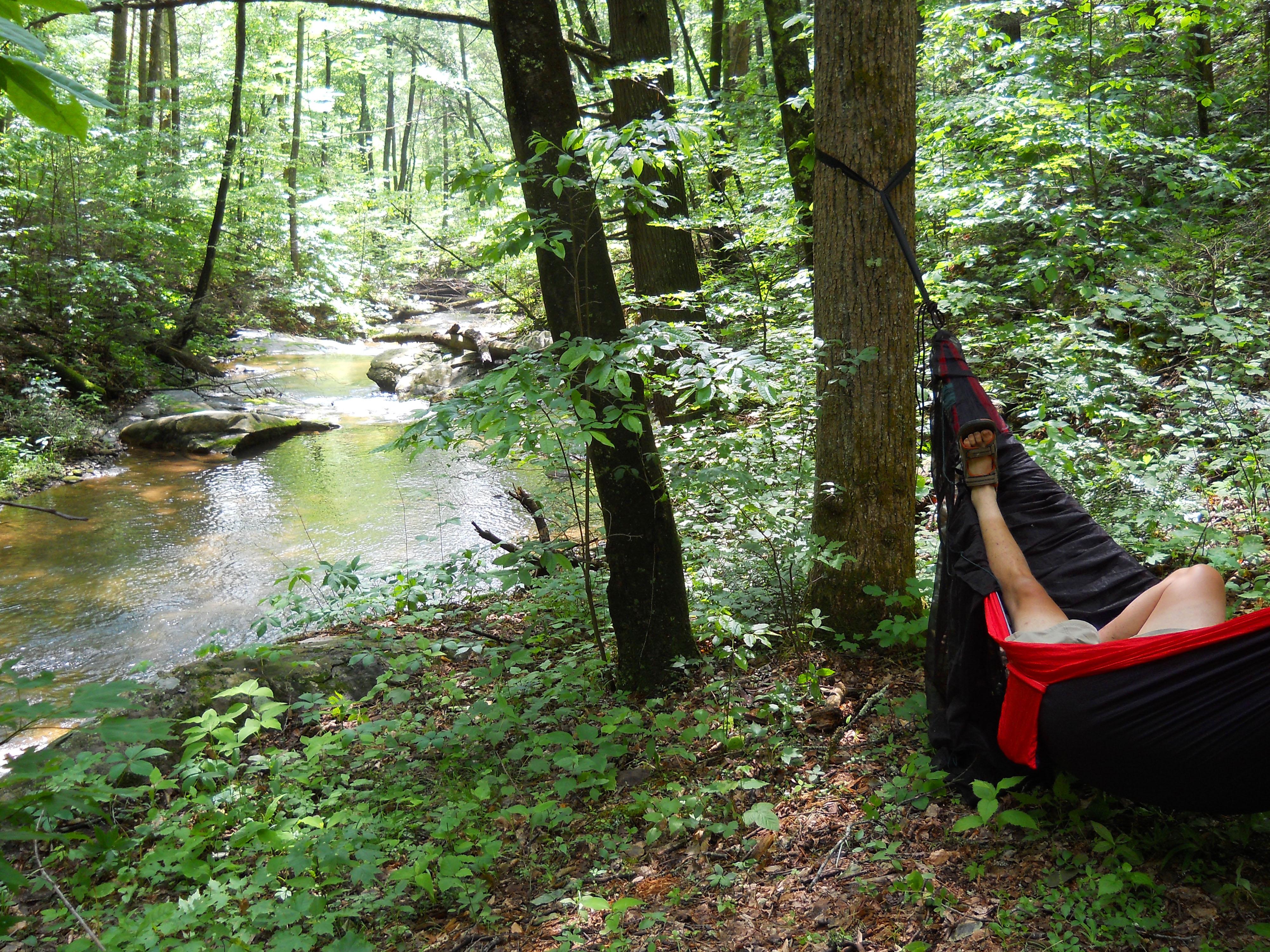 Hanging near Brown Mountain Creek