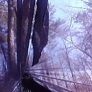 Test Hang of DH Nighthawk by TexanForLife in Hammocks