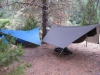 Hammocks On The Rogue River