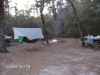 Honey Hill Rec.campground-2010
