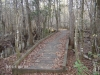 Swampfox Passage Trail-2010 by hikingshoes in Faces